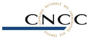 CNCC - Compagnie Nationale des Commissaires aux Comptes